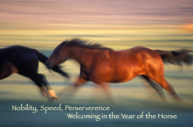 Blog Year of the Horse Facebook
