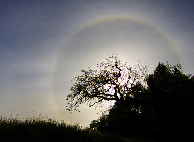Blog King Equinox sundog 1