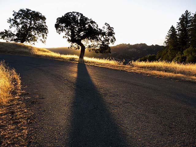 Blog post King sunrise 3
