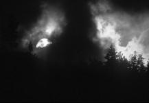 Full Moon Fog
