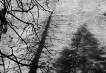 Shadows On Granite