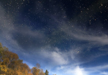 Russian Leaf Cloud